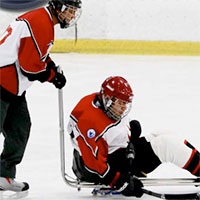 Northeast Sled Hockey League